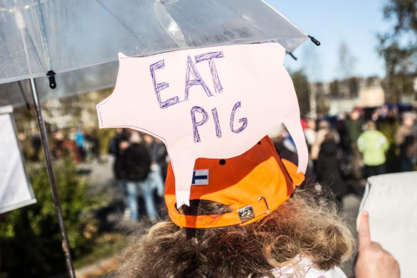 Eat pig